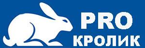 ProKrolik: полезная информация про кроликов